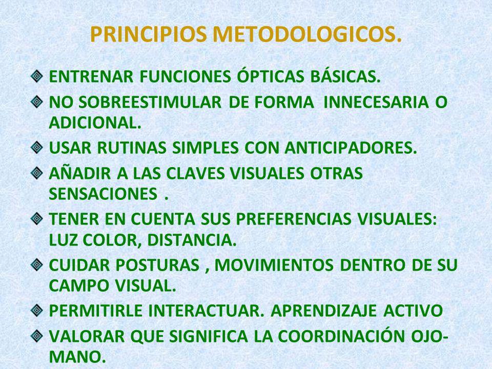 PRINCIPIOS METODOLOGICOS.