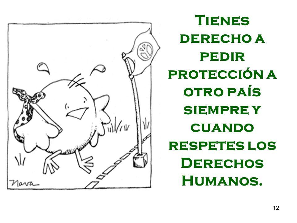 Tienes derecho a pedir protección a otro país siempre y cuando respetes los Derechos Humanos.