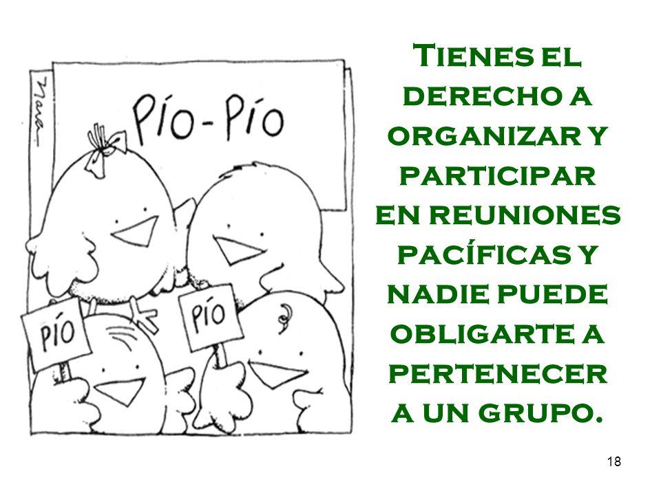 Tienes el derecho a organizar y participar en reuniones pacíficas y nadie puede obligarte a pertenecer a un grupo.