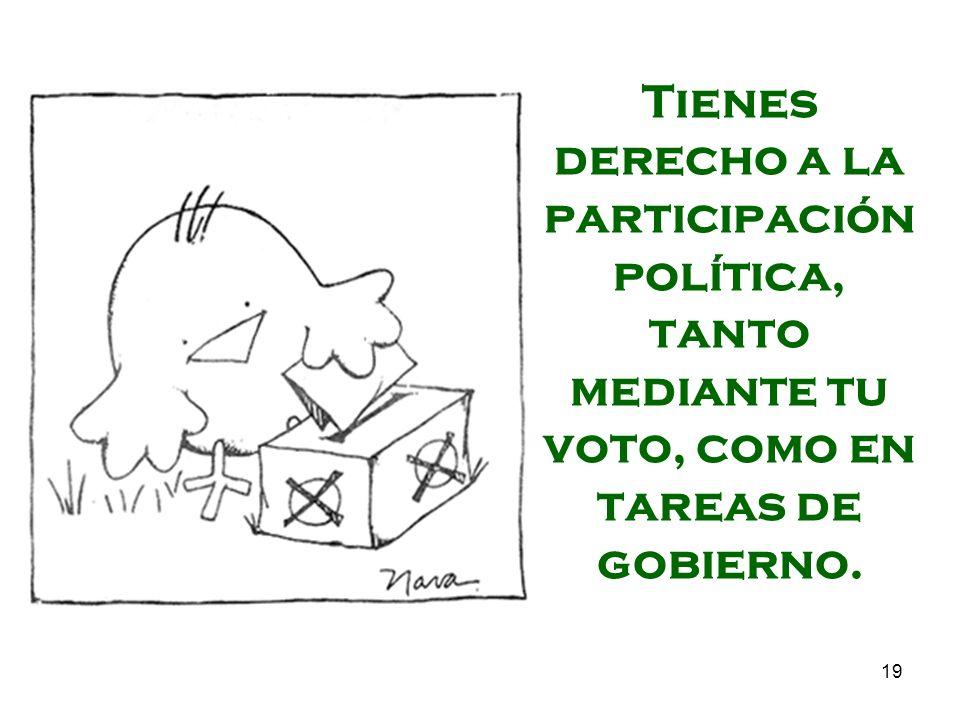 Tienes derecho a la participación política, tanto mediante tu voto, como en tareas de gobierno.