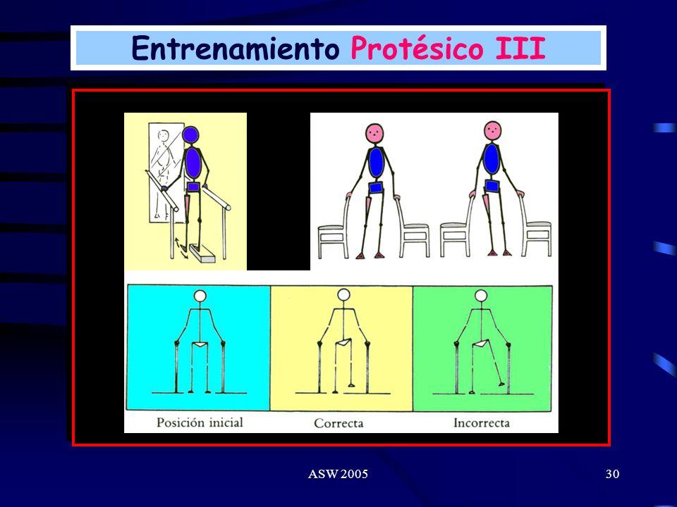 Entrenamiento Protésico III