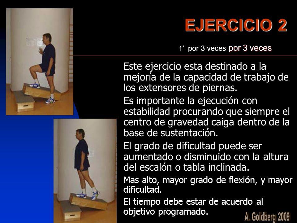 EJERCICIO 2 1' por 3 veces por 3 veces. Este ejercicio esta destinado a la mejoría de la capacidad de trabajo de los extensores de piernas.