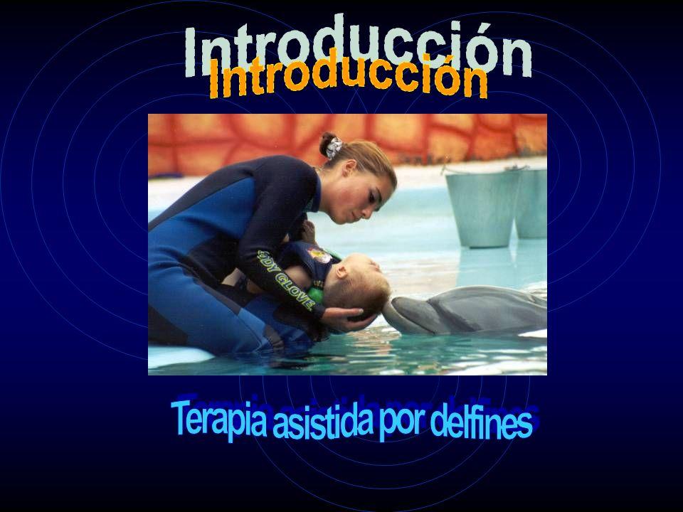 Terapia asistida por delfines