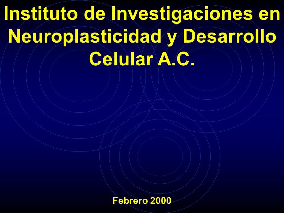 Instituto de Investigaciones en Neuroplasticidad y Desarrollo Celular A.C.