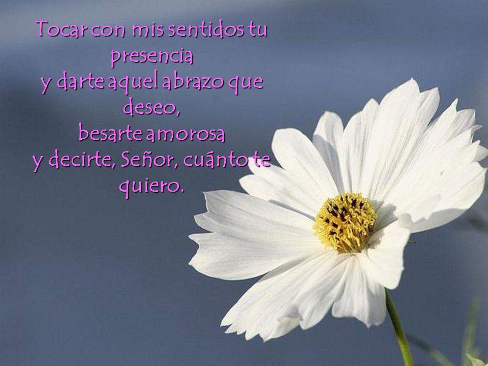 Tocar con mis sentidos tu presencia y darte aquel abrazo que deseo,