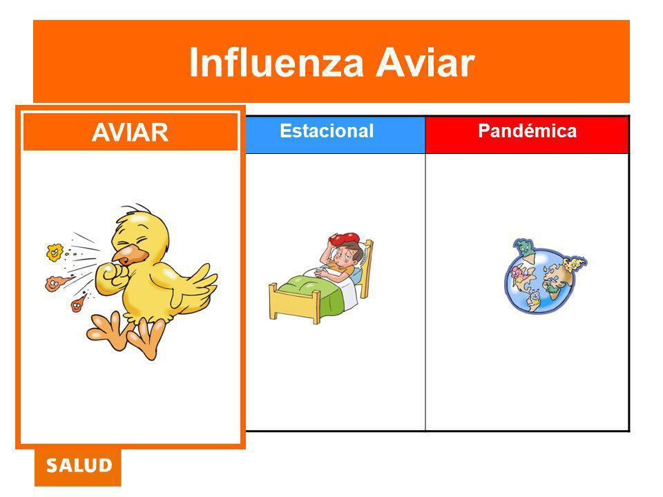 Influenza Aviar AVIAR Aviar Estacional Pandémica
