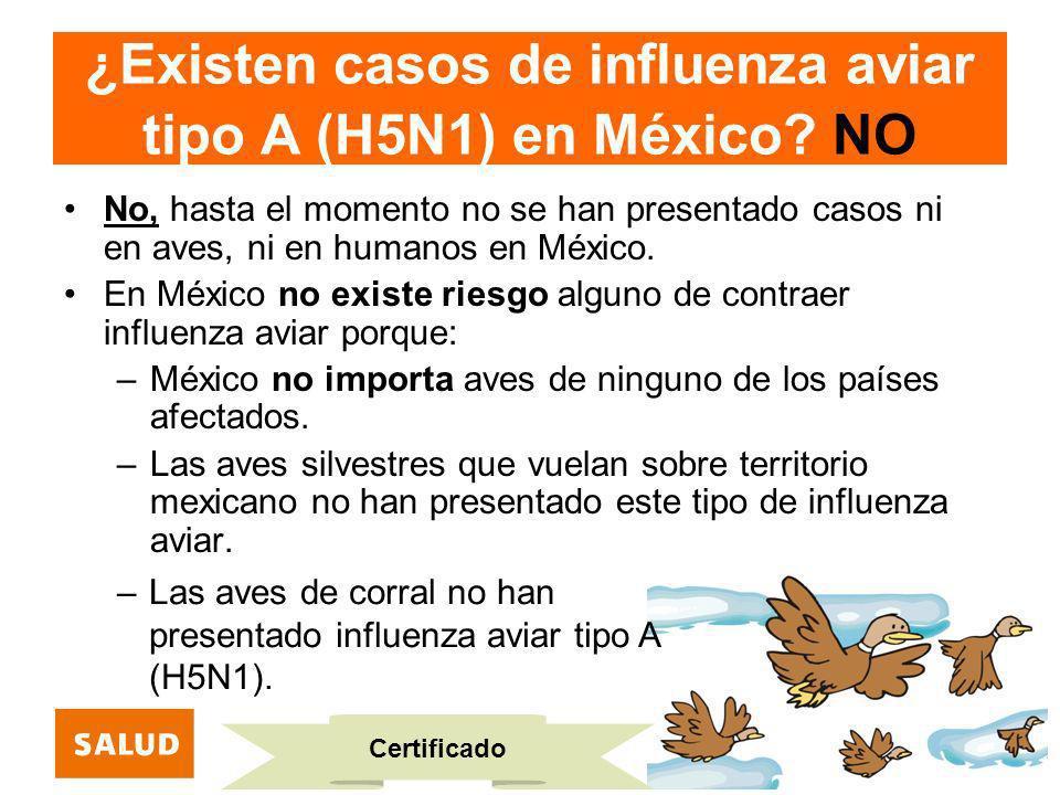 ¿Existen casos de influenza aviar tipo A (H5N1) en México NO