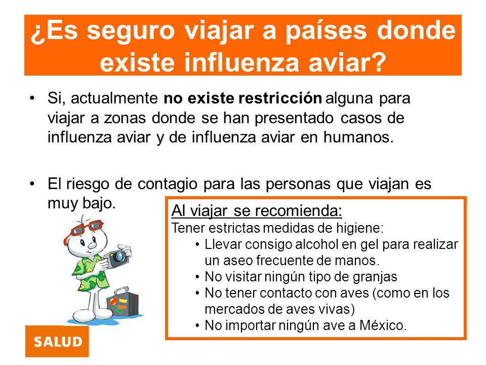 ¿Es seguro viajar a países donde existe influenza aviar