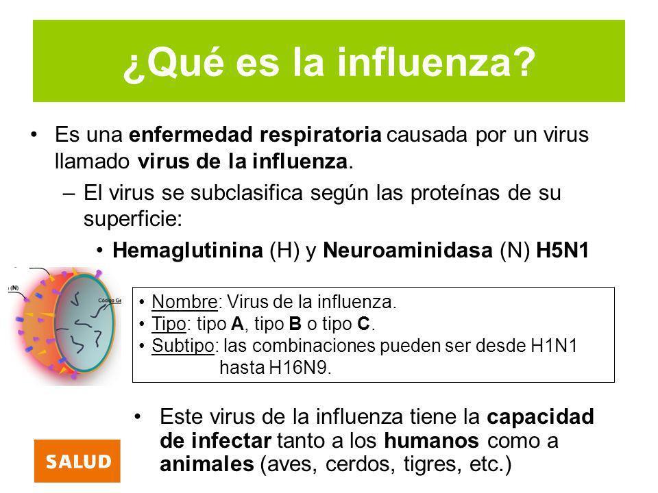 ¿Qué es la influenza Es una enfermedad respiratoria causada por un virus llamado virus de la influenza.