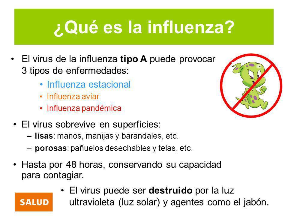 ¿Qué es la influenza El virus de la influenza tipo A puede provocar 3 tipos de enfermedades: Influenza estacional.