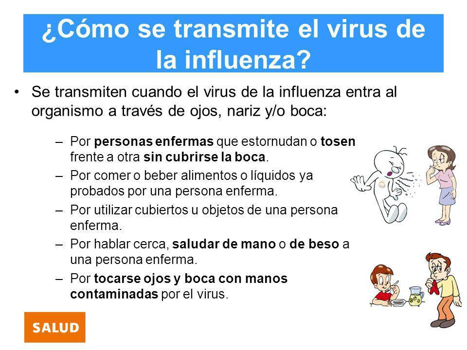 ¿Cómo se transmite el virus de la influenza