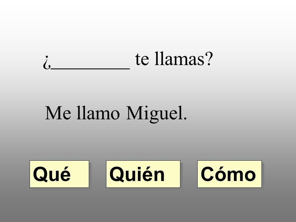 ¿________ te llamas Me llamo Miguel. Qué Quién Cómo