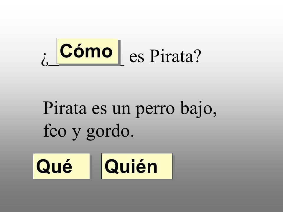 Cómo ¿________ es Pirata Pirata es un perro bajo, feo y gordo. Qué Quién