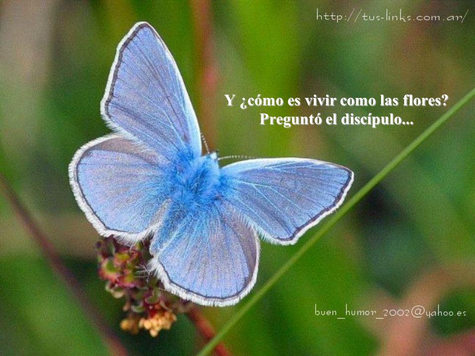 Y ¿cómo es vivir como las flores Preguntó el discípulo...