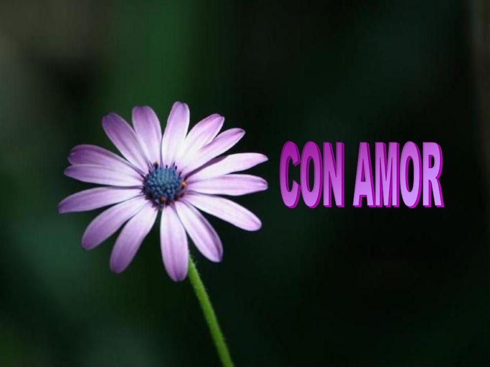 CON AMOR