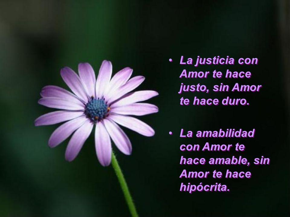 La justicia con Amor te hace justo, sin Amor te hace duro.