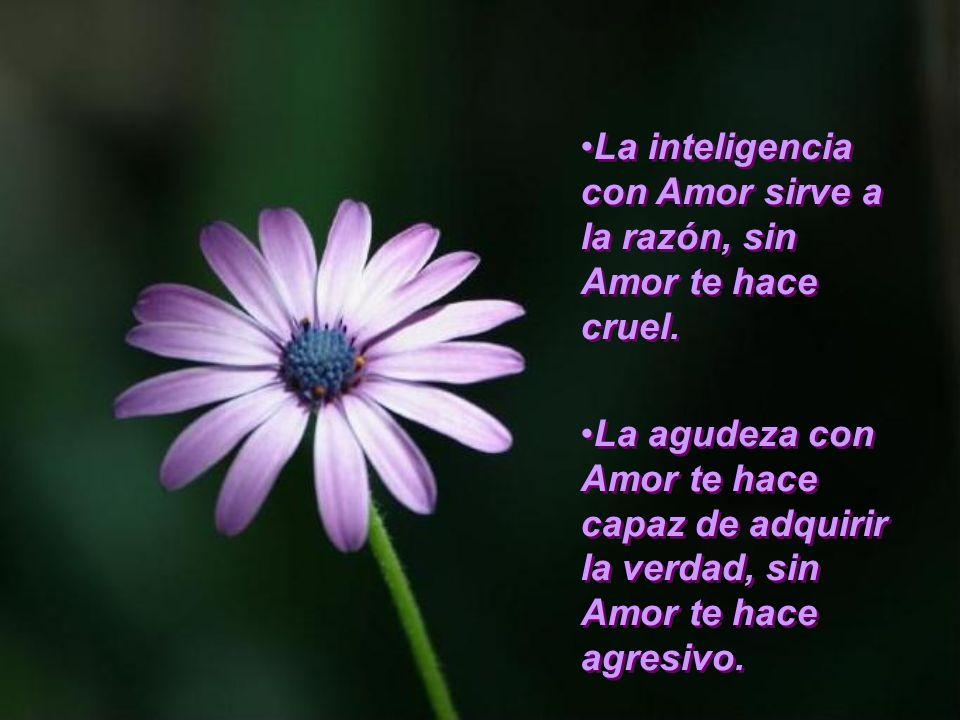 La inteligencia con Amor sirve a la razón, sin Amor te hace cruel.