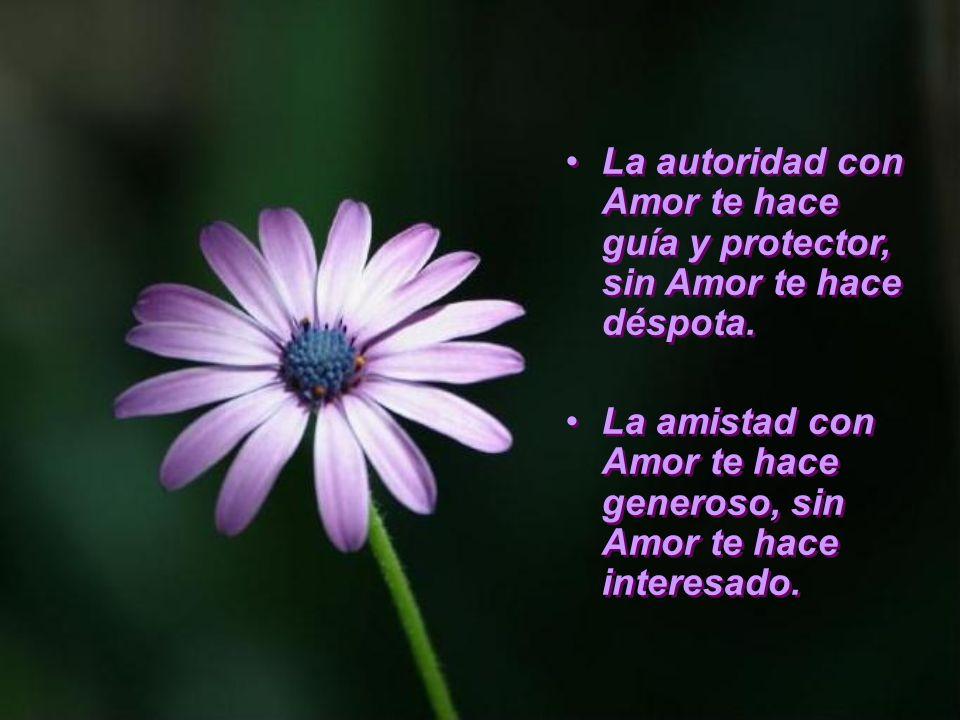 La autoridad con Amor te hace guía y protector, sin Amor te hace déspota.