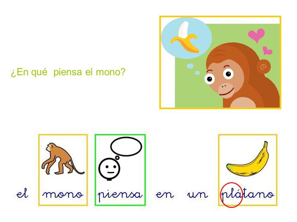 ¿En qué piensa el mono
