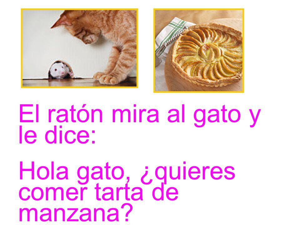 El ratón mira al gato y le dice: