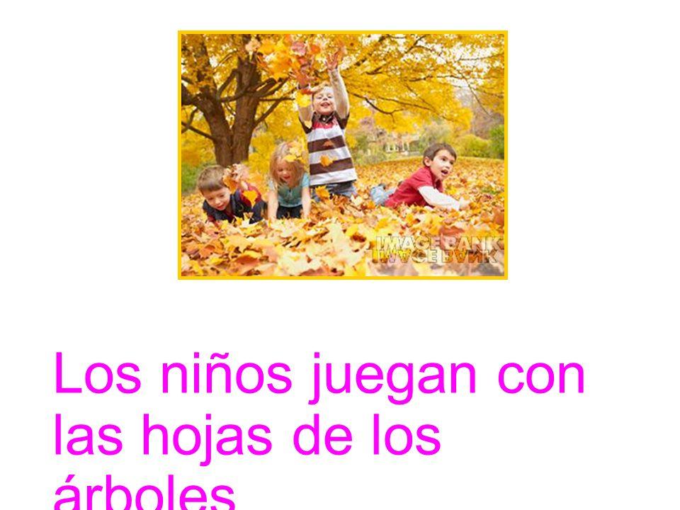 Los niños juegan con las hojas de los árboles