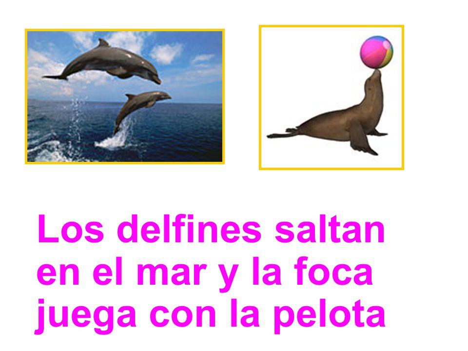 Los delfines saltan en el mar y la foca juega con la pelota