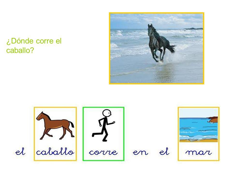 ¿Dónde corre el caballo