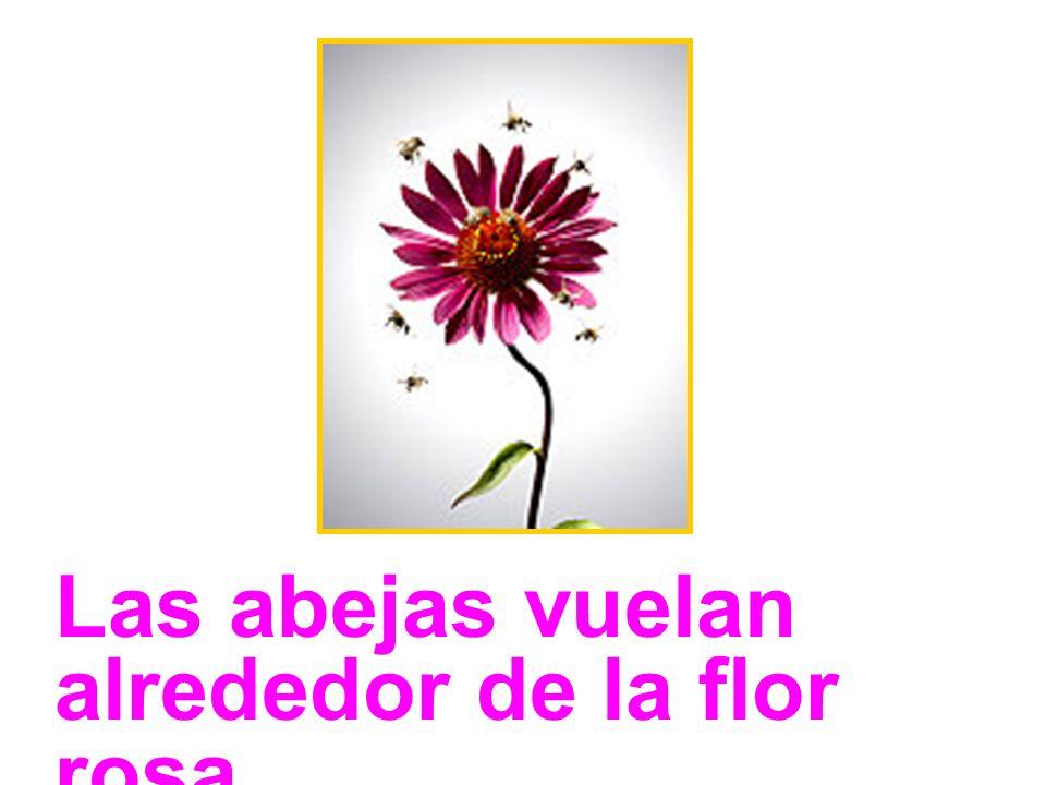 Las abejas vuelan alrededor de la flor rosa