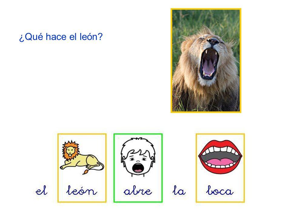 ¿Qué hace el león