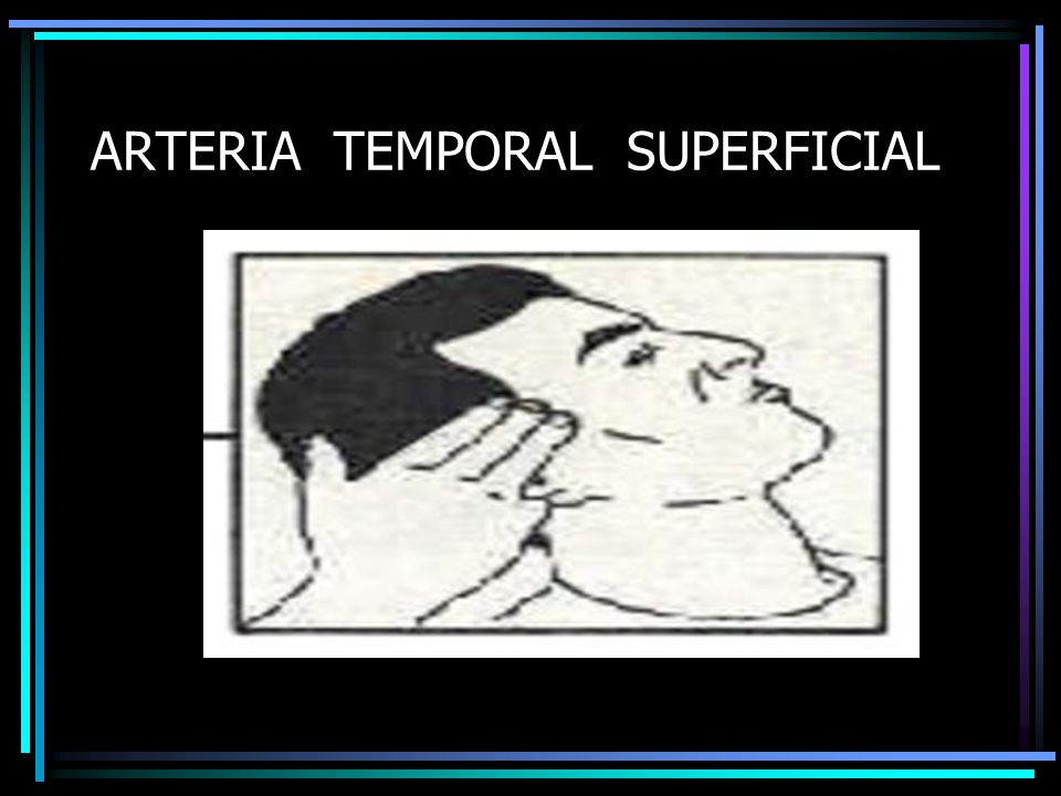 ARTERIA TEMPORAL SUPERFICIAL