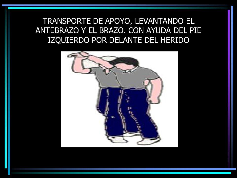 TRANSPORTE DE APOYO, LEVANTANDO EL ANTEBRAZO Y EL BRAZO