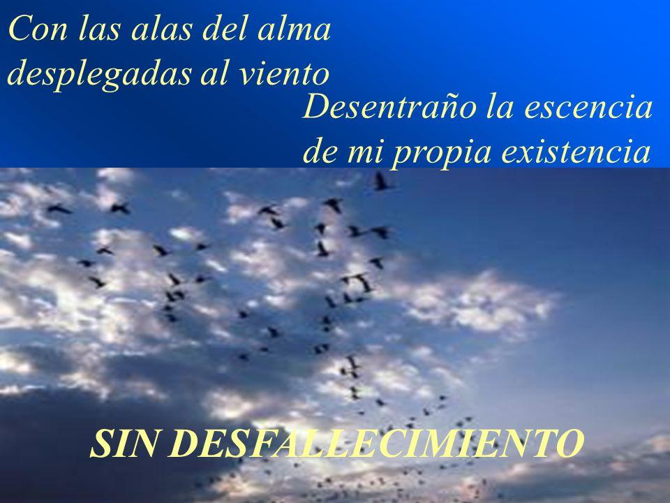 SIN DESFALLECIMIENTO Con las alas del alma desplegadas al viento