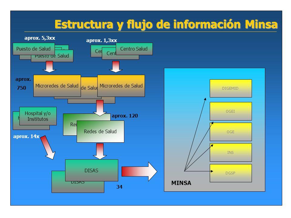 Estructura y flujo de información Minsa