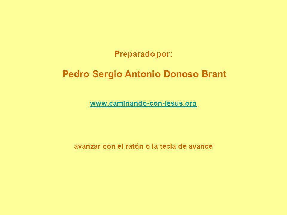 Preparado por: Pedro Sergio Antonio Donoso Brant www