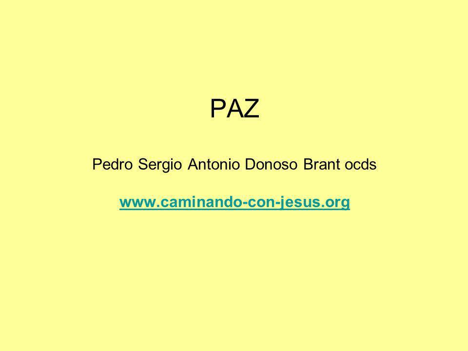 PAZ Pedro Sergio Antonio Donoso Brant ocds www.caminando-con-jesus.org