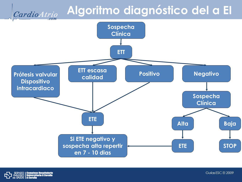 Algoritmo diagnóstico del a EI
