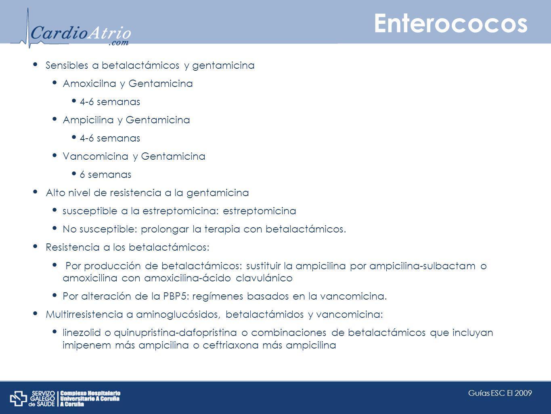 Enterococos Sensibles a betalactámicos y gentamicina