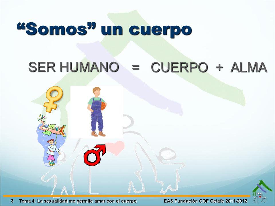 Somos un cuerpo SER HUMANO = CUERPO + ALMA