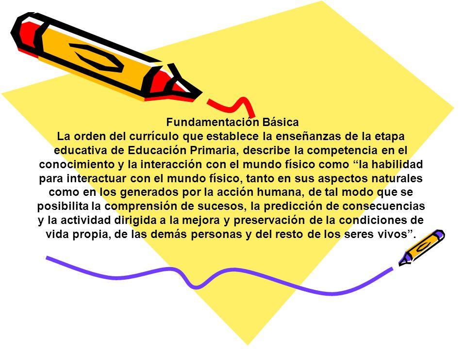 Fundamentación Básica