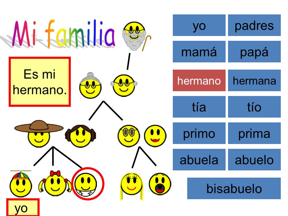 Mi familia yo padres mamá papá Es mi hermano. tía tío primo prima