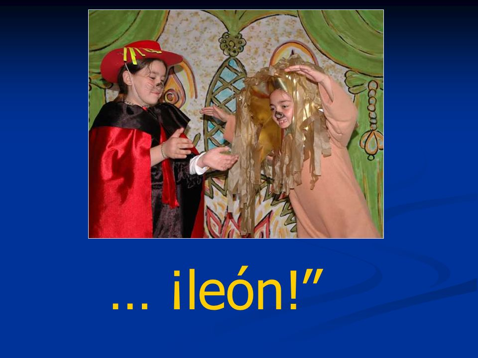 … ¡león!