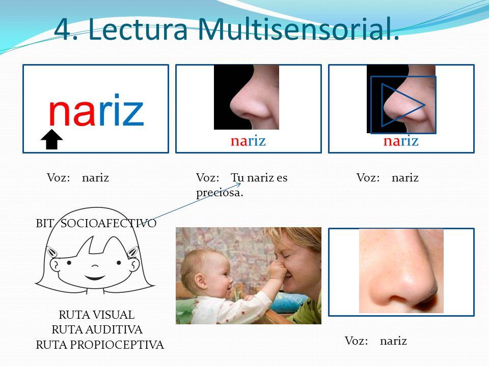 nariz 4. Lectura Multisensorial. nariz nariz Voz: nariz