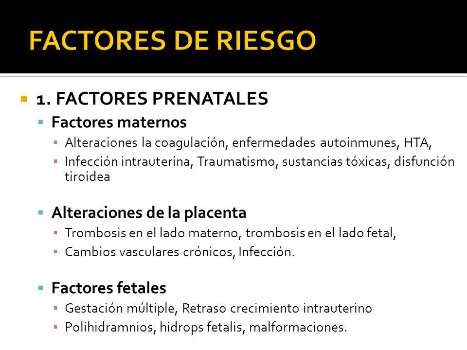 FACTORES DE RIESGO 1. FACTORES PRENATALES Factores maternos