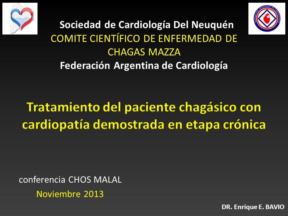 conferencia CHOS MALAL Noviembre 2013