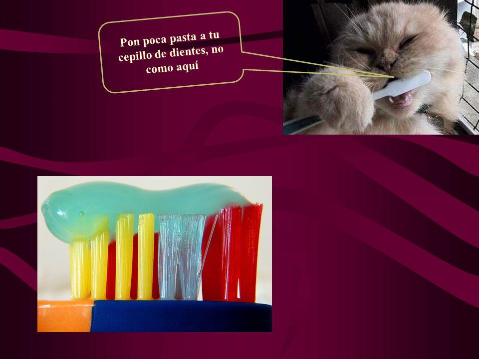Pon poca pasta a tu cepillo de dientes, no como aquí