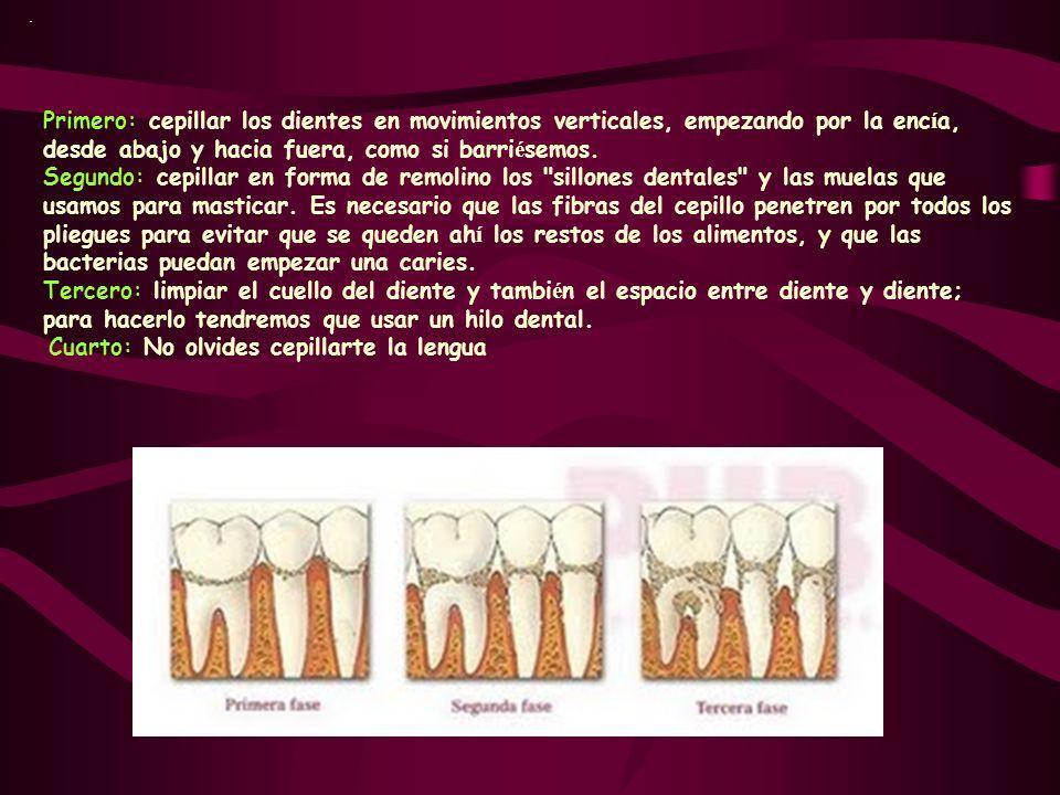 . Primero: cepillar los dientes en movimientos verticales, empezando por la encía, desde abajo y hacia fuera, como si barriésemos.