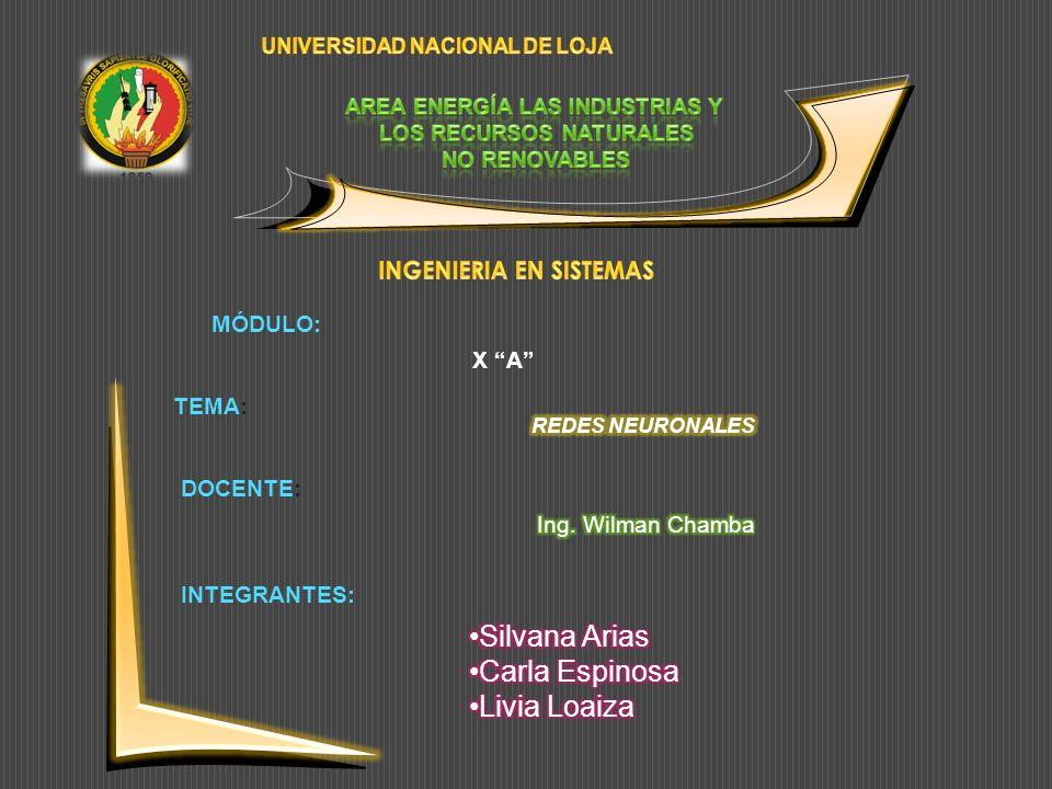 Silvana Arias Carla Espinosa Livia Loaiza INGENIERIA EN SISTEMAS