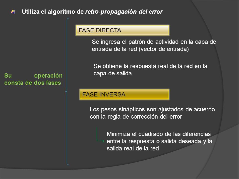 Utiliza el algoritmo de retro-propagación del error