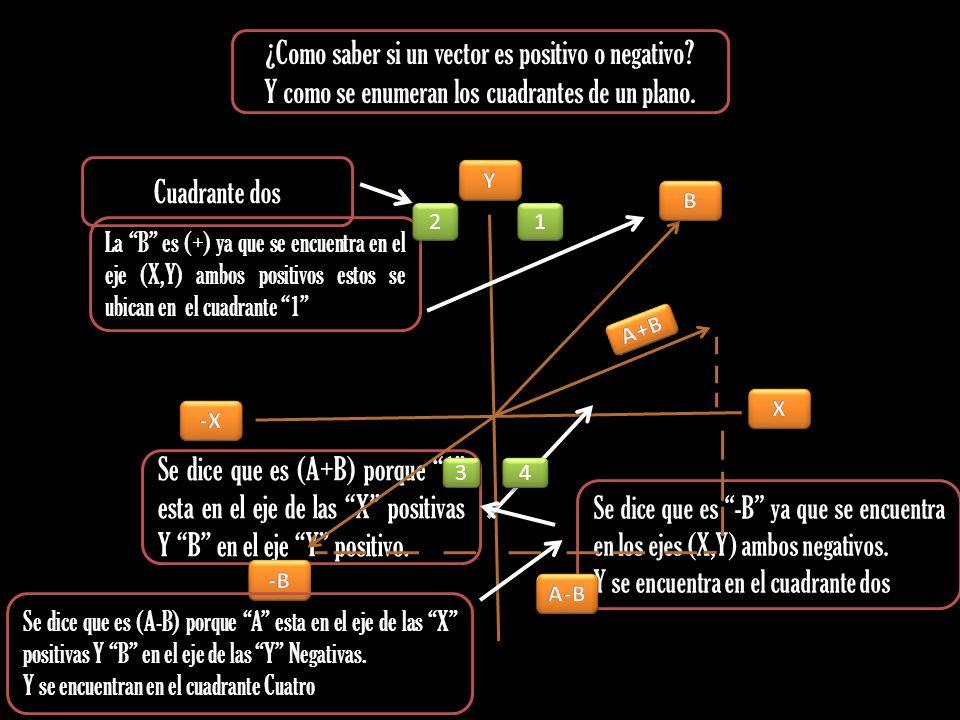 ¿Como saber si un vector es positivo o negativo