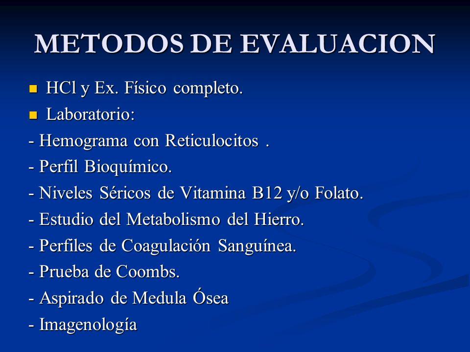 METODOS DE EVALUACION HCl y Ex. Físico completo. Laboratorio: